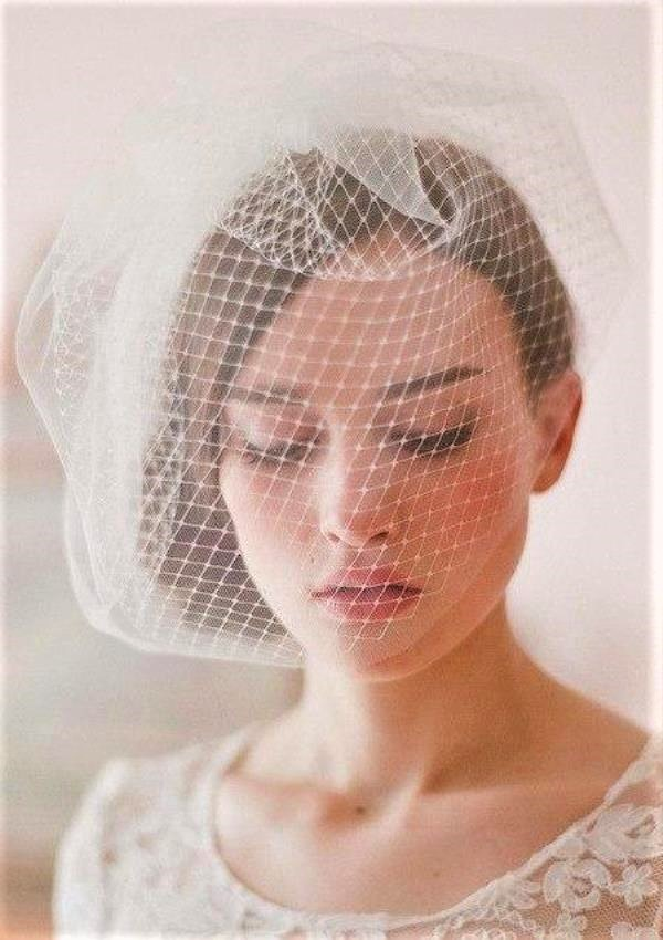Elegant Birdcage Wedding Veil