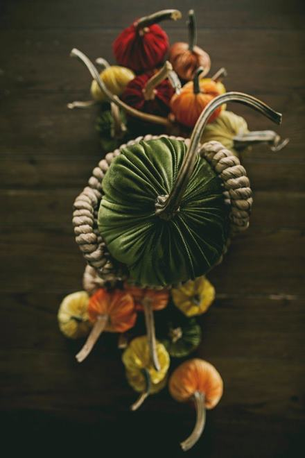 Fall Velvet Pumpkins