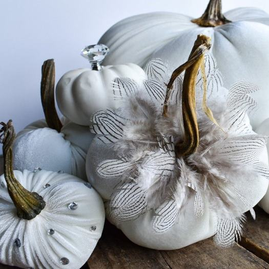 Velvet Pumpkin with Feathers